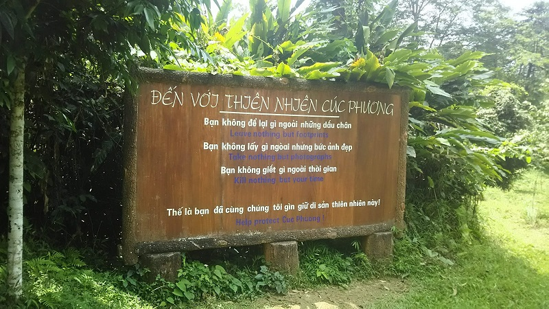 ベトナム ニンビン紀行 クックフォン国立公園は蝶の楽園!