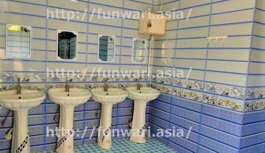 旅に出たら、トイレが気になる!世界のトイレをのぞいてみた【キプロス、ジョージア、アルメニア、イラン】